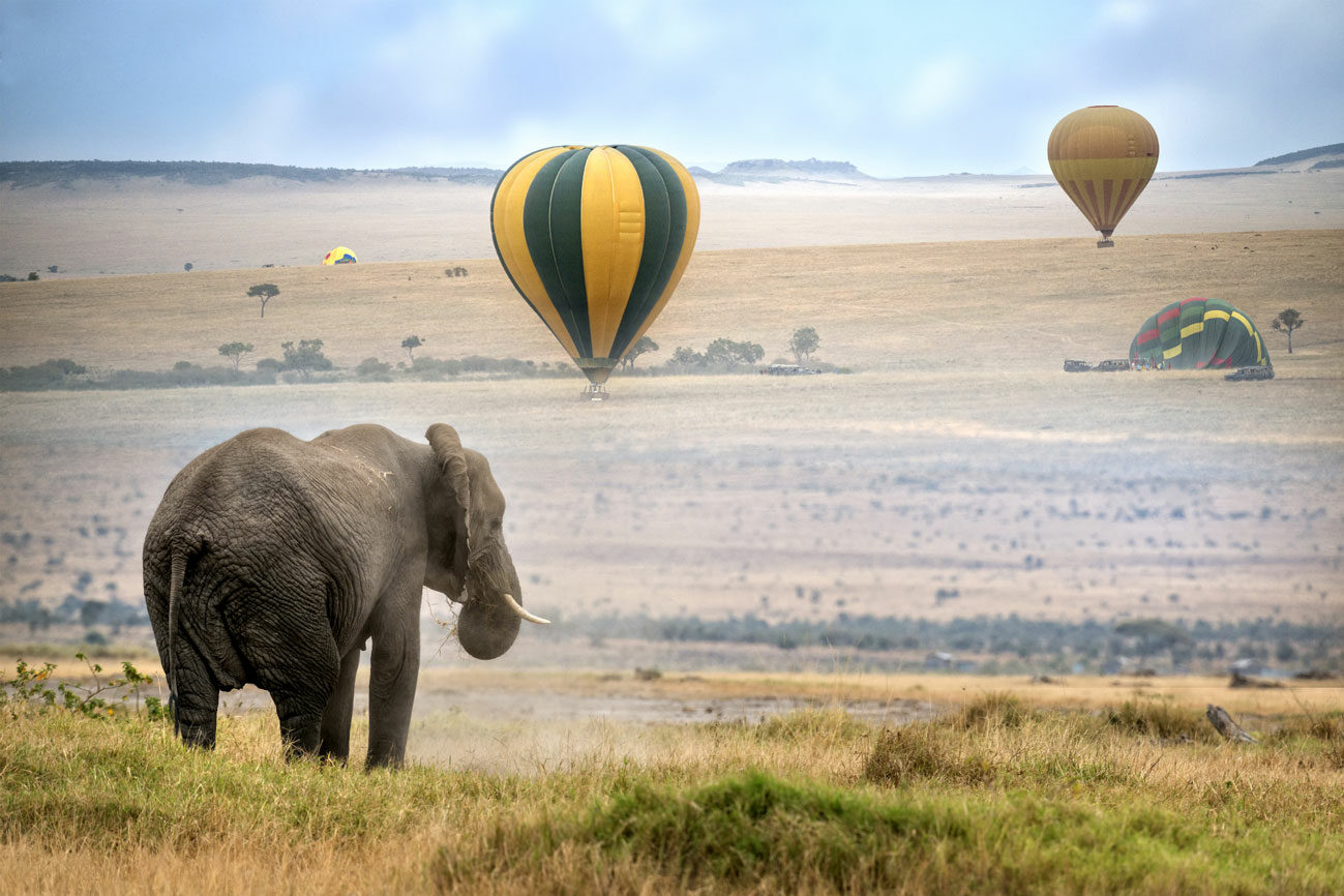 Elephant-and-air-balloon-Kenya